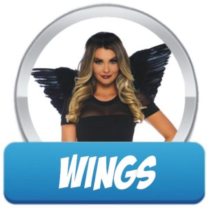 Wings Accessories